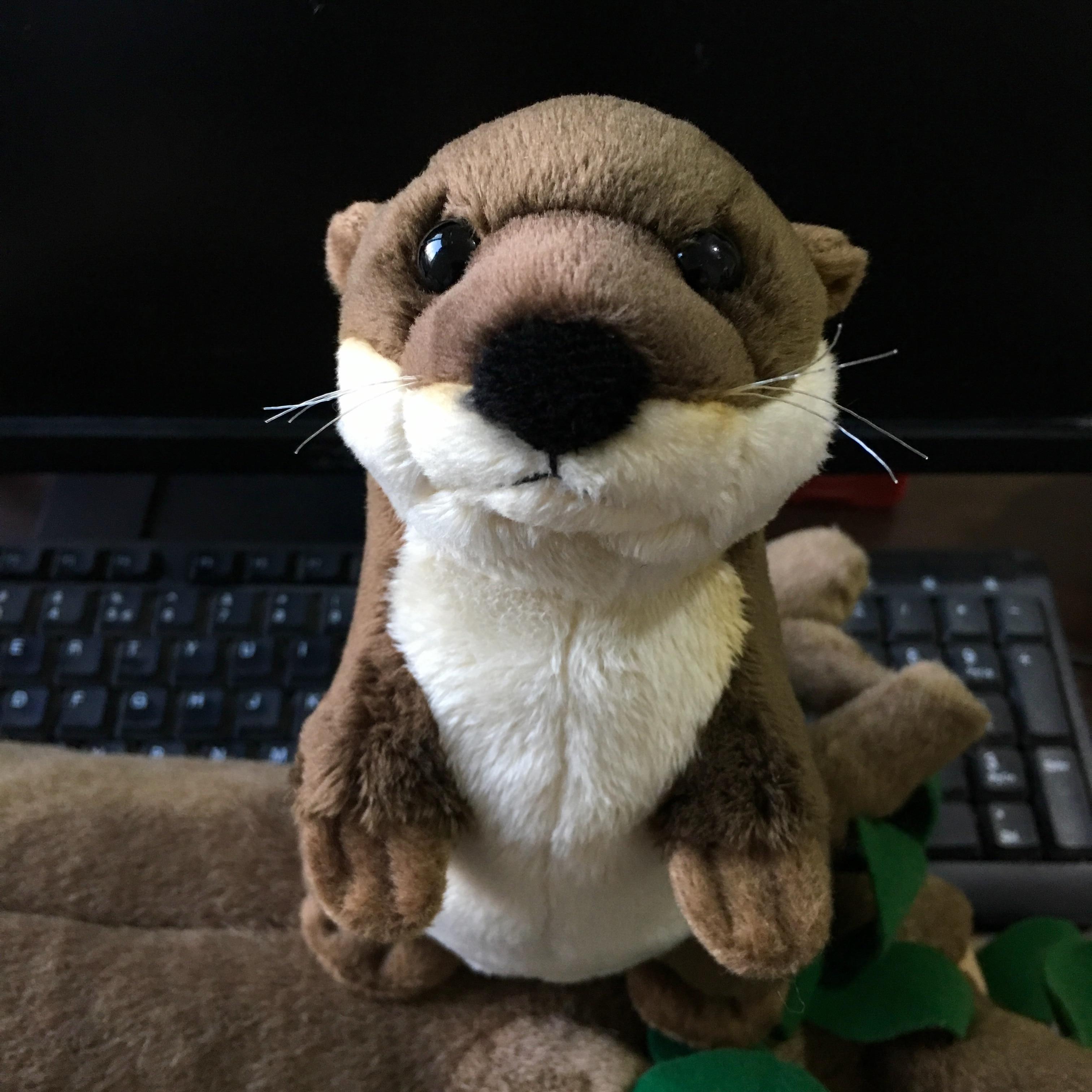 20cm da vida real eurasian rio lontra brinquedo de pelúcia realista animais selvagens brinquedos de pelúcia lifelike macio otters brinquedo presente para crianças
