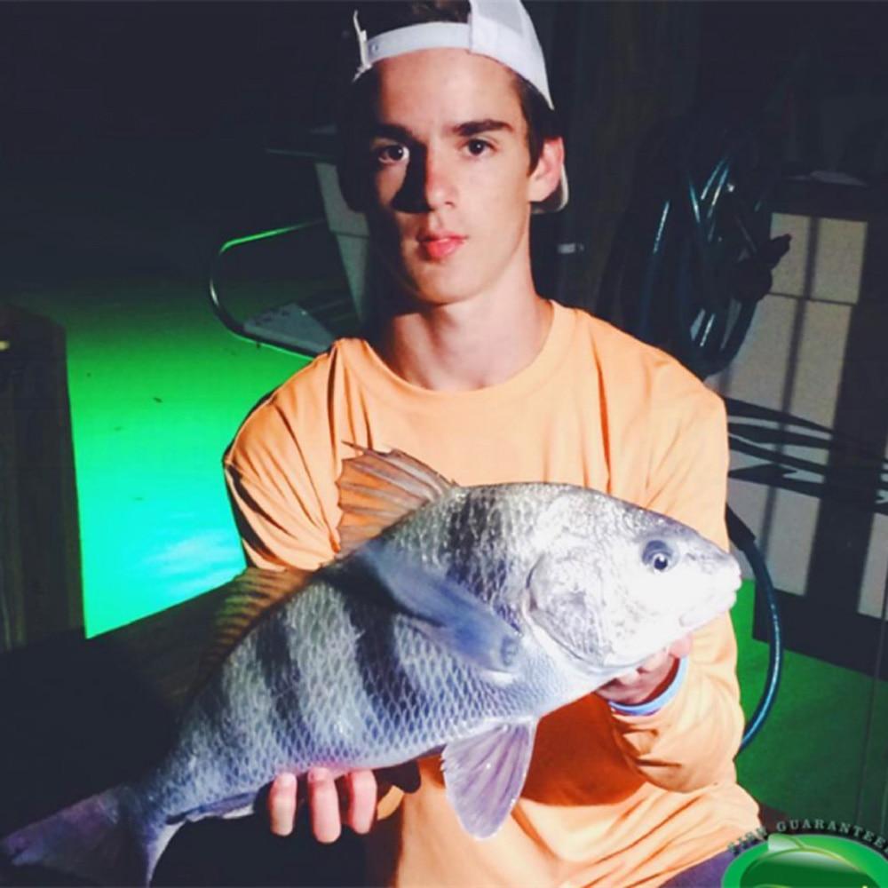 isca para atrair peixes, submersível, luz de pesca
