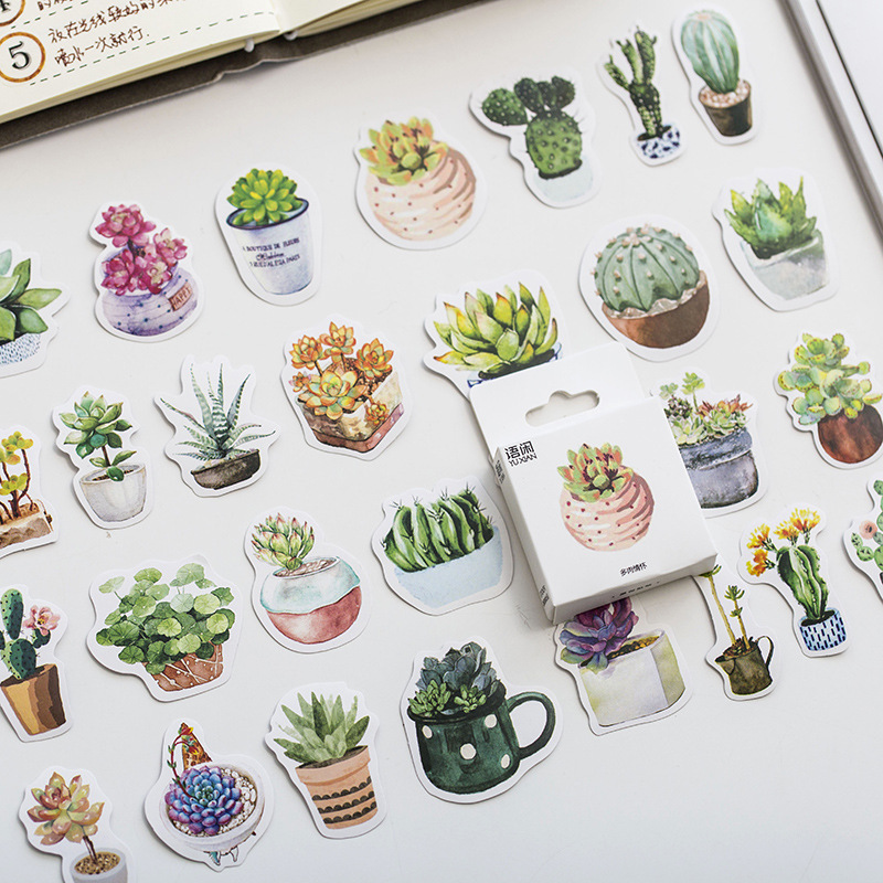 Mohamm 50PCS Boxed Stickers Feelings Of Succulentsstickers Creative Cute Cartoon Plant Sticker Flakes Scrapbooking Gift Girl Sch