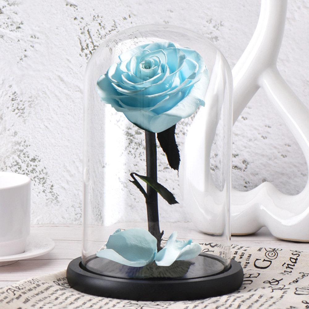 6 стилей,, свежие цветы красавицы и чудовища, красные вечные розы в стеклянном куполе, Рождественский подарок на день Святого Валентина, Прямая поставка - Цвет: light blue rose