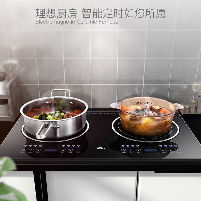 Double Burner Electric Cooktop