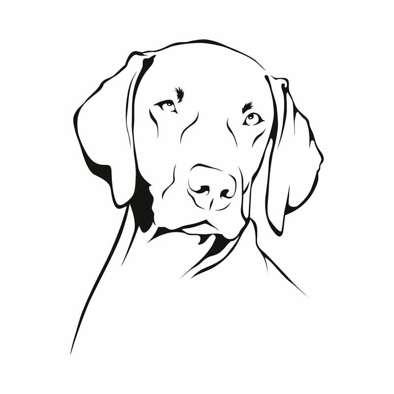 Sinal de Janela Gsd Bumper Decalque Presente V24 Adesivo Carro Pastores Alemães Cão Alsaciana