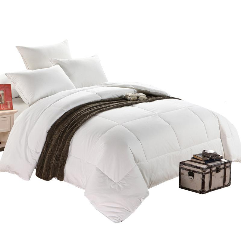 Quilts King Size Soft And Comfortable Down Blanket Four Seasons Comforters Cotton Comforters & Duvets     - title=