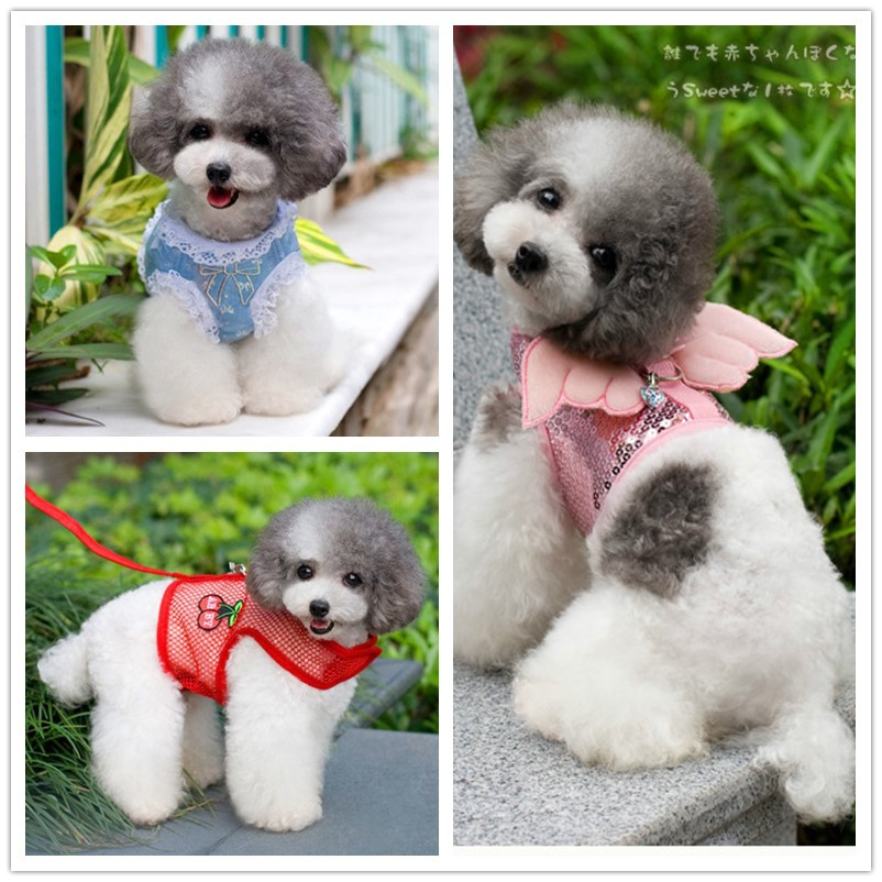 Abby Dog Hand Holding Rope Abby Sequin Angel Chest And Back Small And Medium-sized Dogs Teddy Vest Chest And Back With Pet Suppl