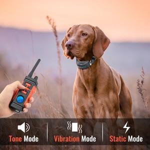 Image 3 - Ipets Collar de choque eléctrico para 3 perros, collarín de vibración recargable e impermeable de 616 M, novedad de 800