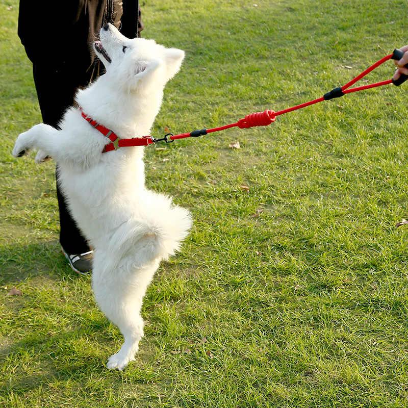 Coleira de náilon para cachorros, coleira para cães e gatos, para corrida e treinamento