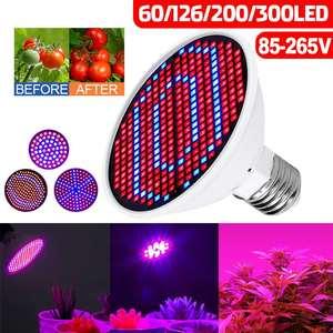 60/126/200/300leds E27 LED Gro