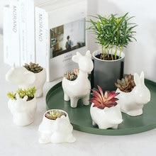 European Handmade Crafts Animal Shaped Planter Pot Small Ceramic Flower Succulent Home And Garden Decoration