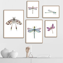Canvas Printed Poster Home Decor Nordic Lovely Colour Dragonfly Fresh HD Painting Wall Art Pictures Living Room Modular(China)
