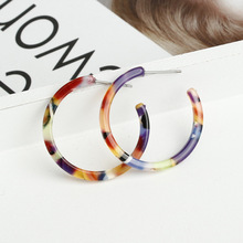 Leopard Tortoiseshell Acetate Circle Hoop Earrings for Women  Vintage Bohemia CC Korean Acrylic Earring za jewelry Female 2020