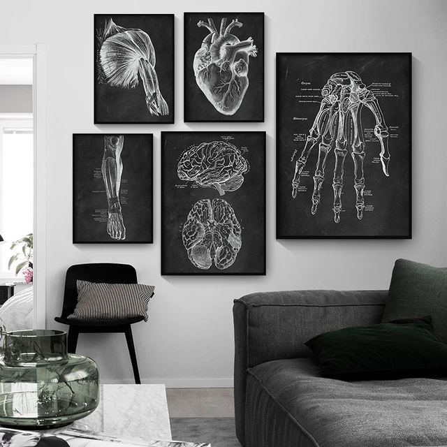 Human Anatomy Artwork Medical Clinic Wall Picture Skeleton Organ Muscle System Vintage Canvas Print Body Education Poster 2