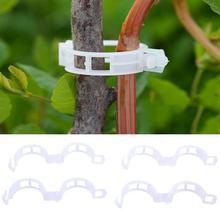 50/100 шт шпалера сада овощи помидор лоза стебли растут вертикально Поддержка зажимы для растений Горячая для подвязки растений инструменты для сельского хозяйства