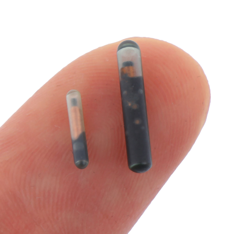 125KHZ/134.2KHZ 2.12*12mm/1.25*7mm Microchip Animal RFID Tag With EM4305 Chip ISO11784/5 FDX-B For Fish Dog Cat Idetification