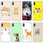 cute Shiba Inu Dog p...