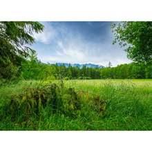 Виниловый фон для фотосъемки на заказ реквизит ландшафтный деревянный