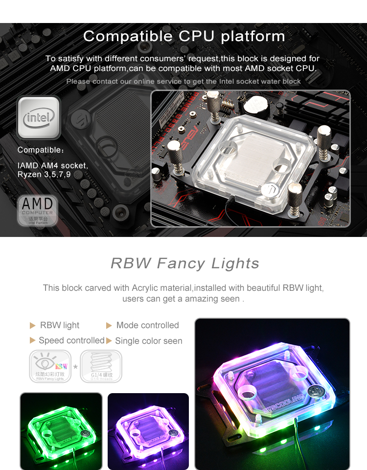 c55w-AMD)_02