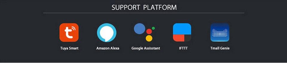 support platform