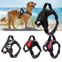 Rope Pet Dog Walking Training Lead Collar Harness Chest Strap Home Supplies(China)