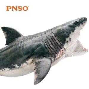 Image 2 - חדש הגעה PNSO Megalodon כריש ים חיים קלאסי צעצועים לילדים בני עתיקות בעלי החיים איור דגם Movable לסת