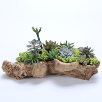 Succulents resin potted plants retro root wood flower pots wholesale succulents