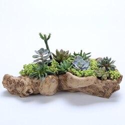 Sukulenty żywiczne rośliny doniczkowe retro korzenie drewniane doniczki hurtowe sukulenty w Doniczki i skrzynki do kwiatów od Dom i ogród na