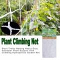 Ротанговая сеть для роста фруктов, овощей, цветов, виноградных растений, подъемная сетка для сада, для зеленых Горохов, огурцов, помидор, гор...