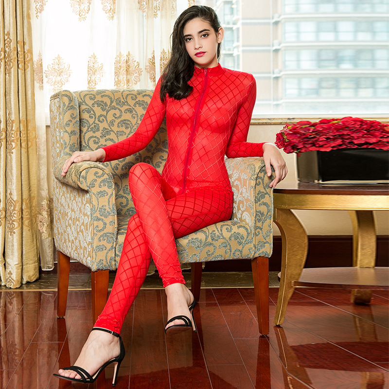Sexy Perspective Long Sleeve Jumpsuit Women Bodystockings Long Zipper Open Crotch Bodysuit Hight Elastic See Through Bodysuits