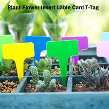 100 Pcs Gardening Labels Nursery Bonsai Label Plastic Plant Type T Label Plant Pot Planter Vegetable Label Tags Plant Marker#LJC(China)