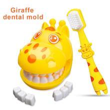 Giraffe Teeth Brush Demo Teeth Teaching Model Dental Model Teeth Model Kids Children Earlier Education Brushing Tooth Toy  Gifts