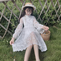 Spring summer 2019 Fairy Princess embroidered lace Flare Sleeve sweet white girls dress Japanese Mori girl temperament dress