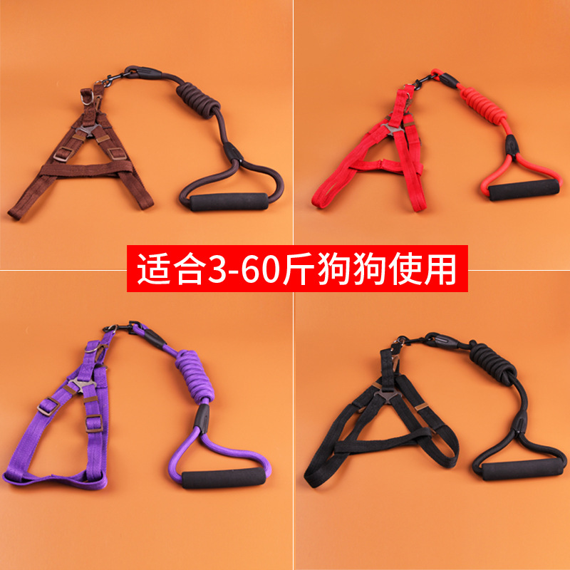 Dog Hand Holding Rope Bell Medium Puppy Dog Teddy Small Chain Puppy Dog Unscalable Pippi Universal