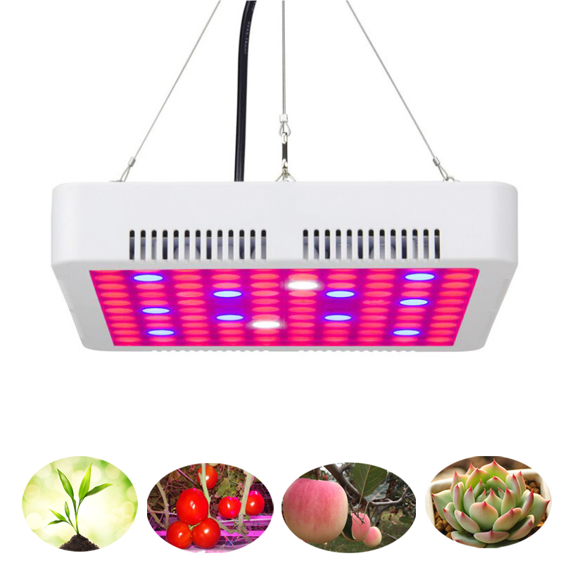 300W LED Grow Light Full Spectrum Phyto Plant Growth Lamp For Indoor Vegetable Seedling Flower Seedling Tent Fitolampy