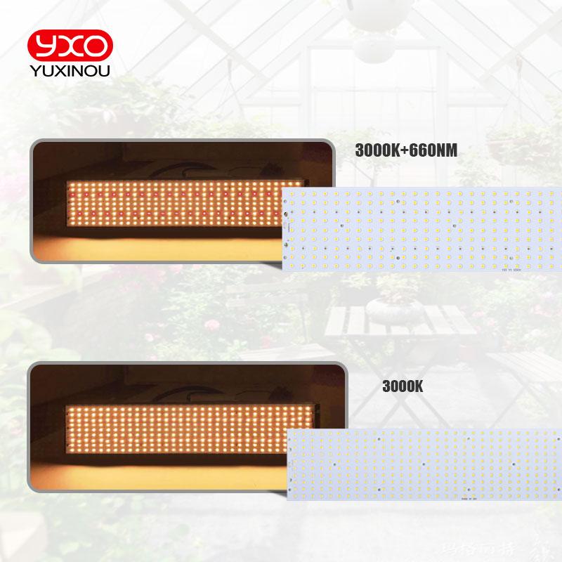 cheapest LED Strip Light RGB 5050 SMD 2835 Flexible Ribbon fita led light strip RGB 5M 10M Bluetooth Remote Controller DC12V Led Decorate