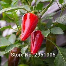 100 шт халапено чили перец быстрорастущий, самый популярный перец бонсай растение для домашнего сада
