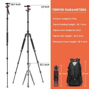 Image 2 - ZAYEX trípode profesional para cámara de viaje, monopié de aluminio ligero y portátil para cámara digital SONY Canon DSLR