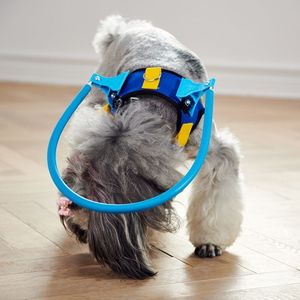 Image 5 - Blind Dogs Pet Safe Harness Anti collision Ring Pets Weak Color Guide Circle Animal Protection Collar Rings