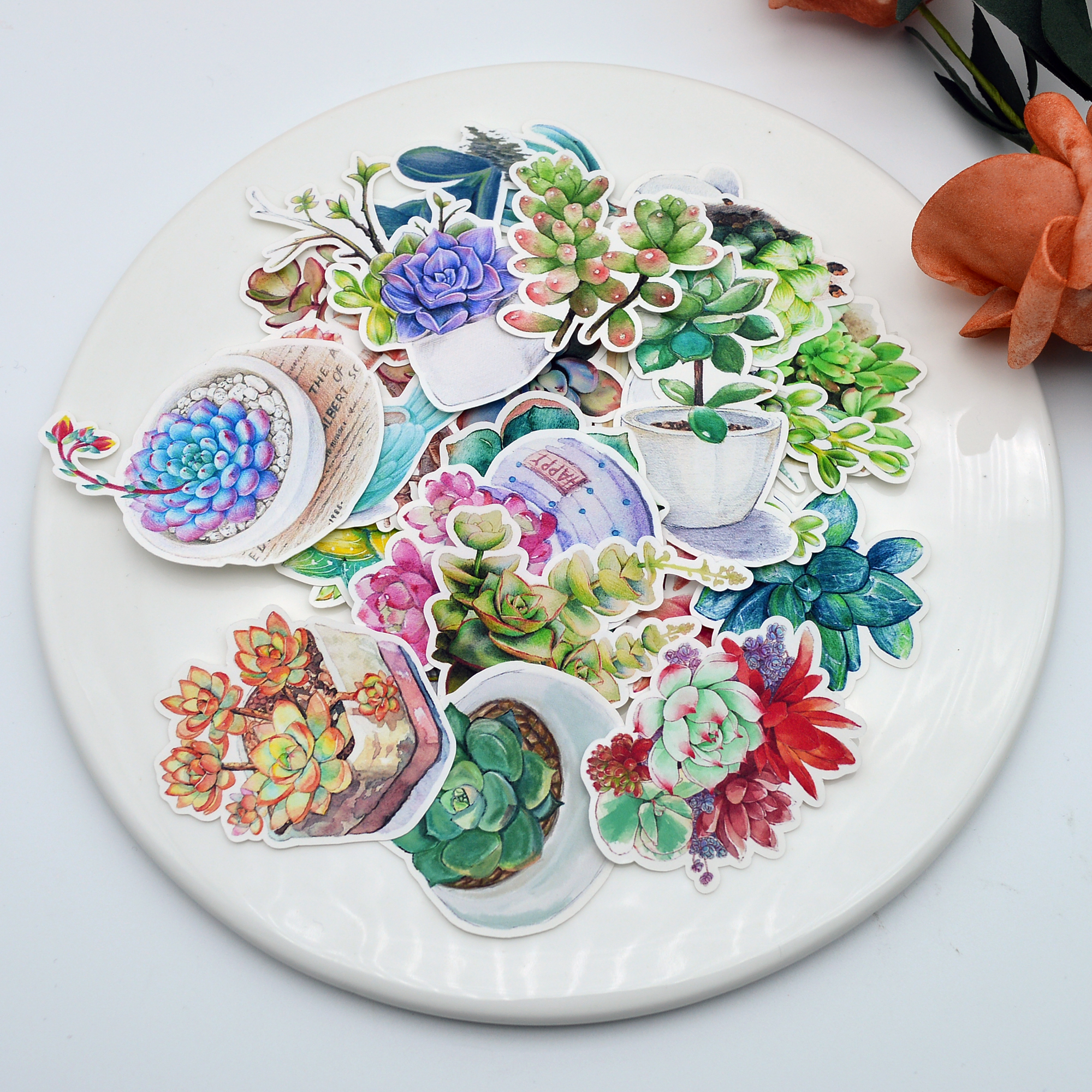 27pcs Pretty Succulent Plants Cactus Sticker Diary Notebook Planner Scrapbooking/ Hand Book Thin Paper Sticker