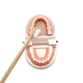 We teach children how to brush their teeth 5