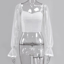 Sexy See Through Mesh Party Shirts Vrouwen Sheer Lange Mouwen Zipper Terug Mini Top Night Club Dragen Korte Witte Slanke shirt Blusas(China)