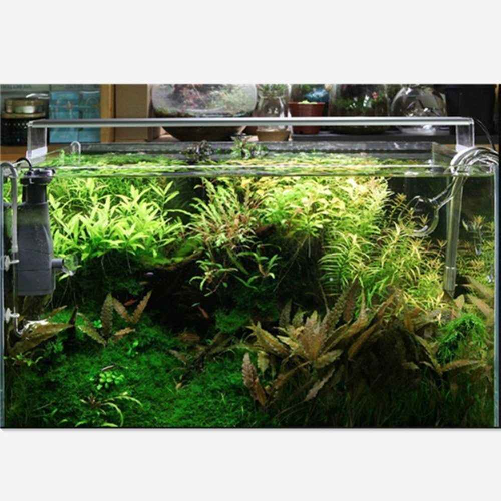 Chihiros seria Aquarum Led oświetlenie 8000K rośliny wodne światło rozproszone Led Fish Tank napowietrznych 5730 LED lampa