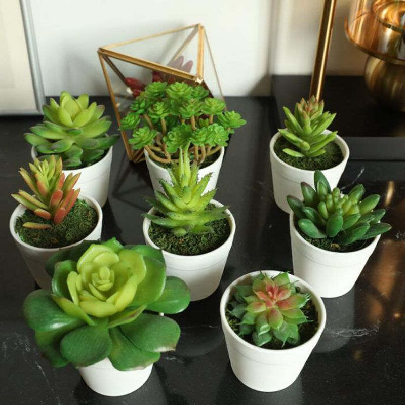 Artificial Plants Bonsai Vivid Cactus Succulent Pot Plants Fake Flowers Potted Ornaments For Home Decoration Hotel Garden Decor