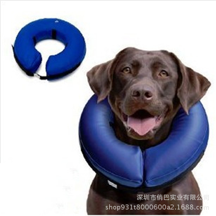 Export Origional Inflatable Pet Pillow Circle/Environmentally Friendly Material Pet Swim Ring/Pet Cat Dog Collar
