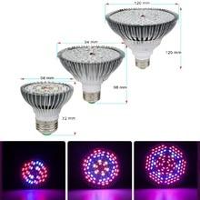 LED işık büyümek tam spektrum 10W 30W 50W 80W E27 LED Phyto lamba Fitolampy ampul 28 40 78 120LEDs bitki çiçekler için lamba fide