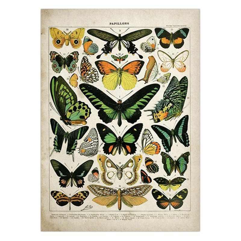 Vintage Adolphe Millot Encyclopedie Posters Vlinder Paddestoelen Kruiden Bloemen Insect Klassieke Canvas Schilderijen Muurstickers