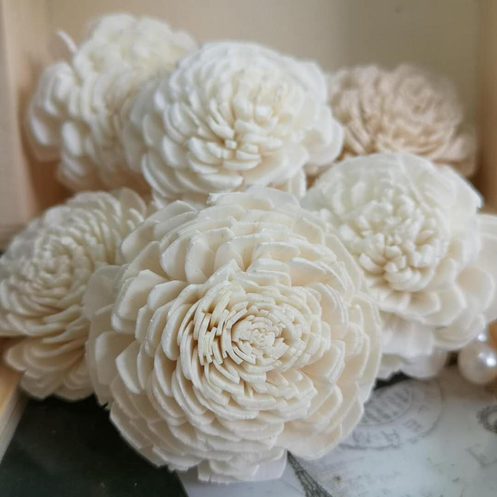 200pcs Sola Wood Flower Dried White Diffuser Wedding Decoration Home Craft Decor