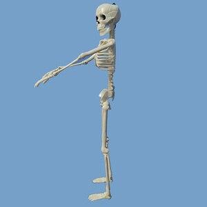 Image 4 - 5 Pcs Human Anatomy Skeleton Skeleton Model Medical Medicine Learning Aid Anatomy 1 Pair Skull Skeleton Hand Bone Halloween