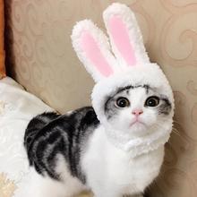 Кошачьи заячьи кроличьи уши, шапка для домашних животных, маскарадные костюмы для кошек, маленьких собак, вечерние, для домашних животных, шапка с заячьими ушами