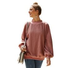Womens Plush Sweatshirts 2019 Autumn Winter New Velvet Hoodies Long-sleeved Clothing Teddy Jacket