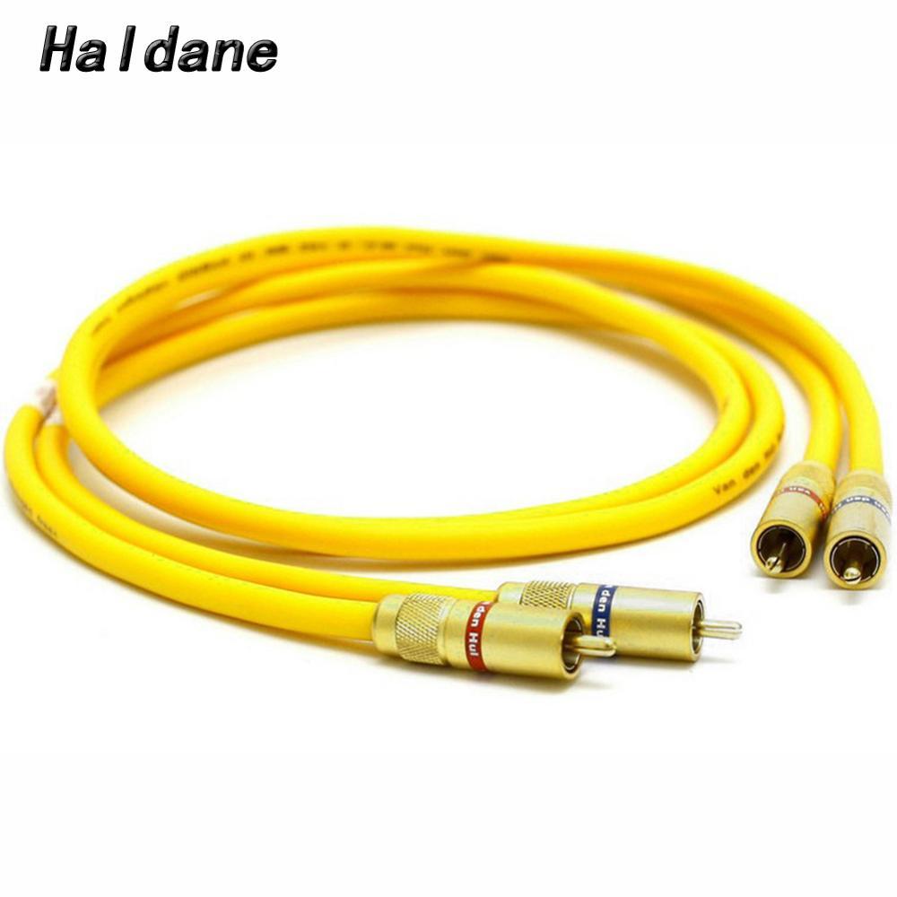 Paire Haldane amplificateur Audio HIFI lecteur CD DVD Van Den Hul VDH hybride RCA câble d'interconnexion Audio 2 RCA à 2 RCA câble