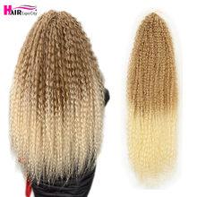 Tresses Afro crépues bouclées au Crochet, 20-28 pouces, ombré, Extensions de cheveux Marly Hair pour femmes, brunes 613